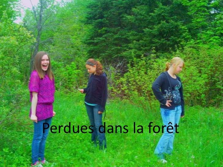 Perdues dans la forêt<br />