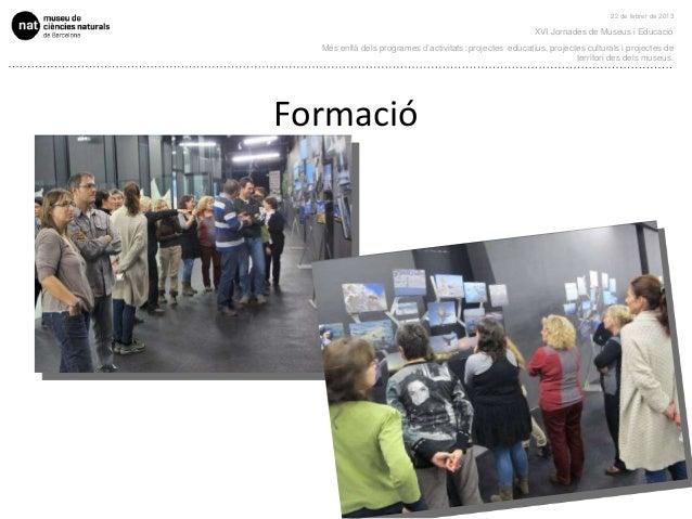 22 de febrer de 2013                                                          XVI Jornades de Museus i Educació  Més enllà...