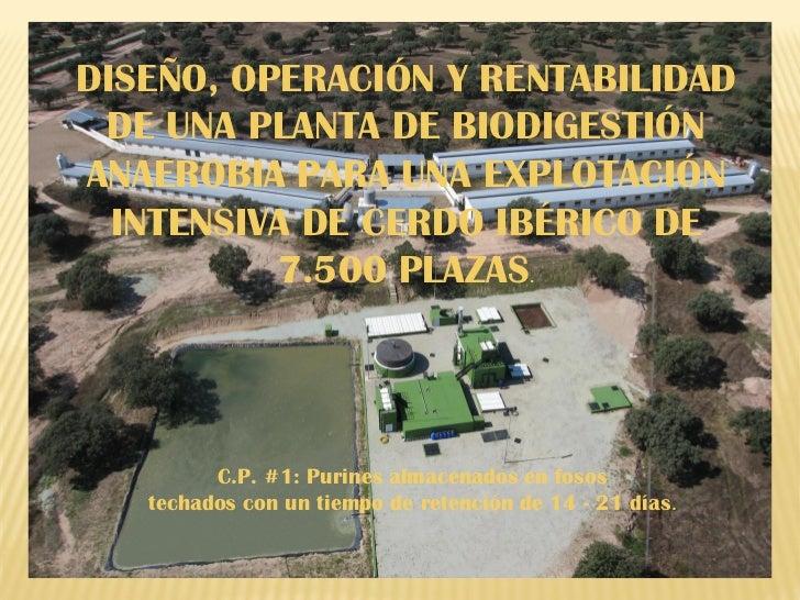 DISEÑO, OPERACIÓN Y RENTABILIDAD DE UNA PLANTA DE BIODIGESTIÓNANAEROBIA PARA UNA EXPLOTACIÓN  INTENSIVA DE CERDO IBÉRICO D...