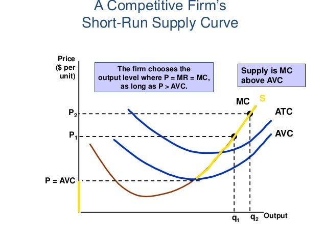 Perfect Competition Lecture Notes (Economics)