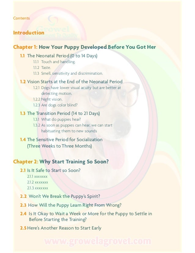 THE PERFECT PUPPY IN 7 DAYS PDF DOWNLOAD