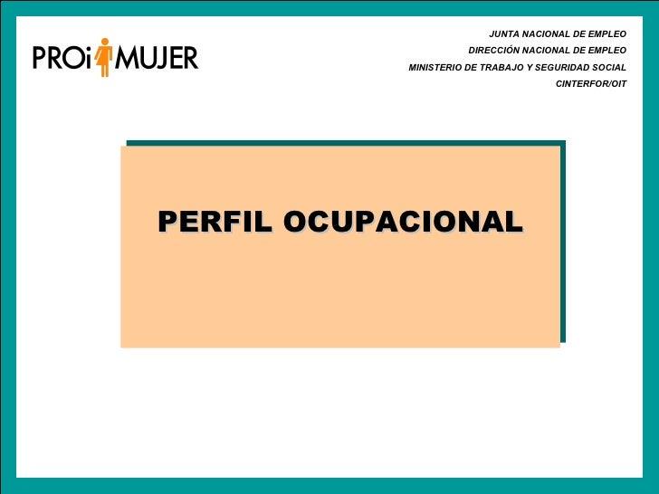 JUNTA NACIONAL DE EMPLEO DIRECCIÓN NACIONAL DE EMPLEO MINISTERIO DE TRABAJO Y SEGURIDAD SOCIAL CINTERFOR/OIT PERFIL OCUPAC...