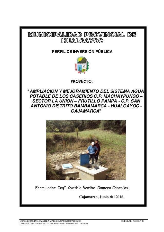 CONSULTOR: ING. CYNTHIA MARIBEL GAMERO CABREJOS CELULAR: #979084901 Dirección: Calle Cahuide 240 – San Carlos – José Leona...