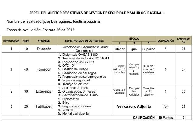 Perfil auditor SG-SST SISTEMAS DE GESTIÓN DE SEGURIDAD Y ...