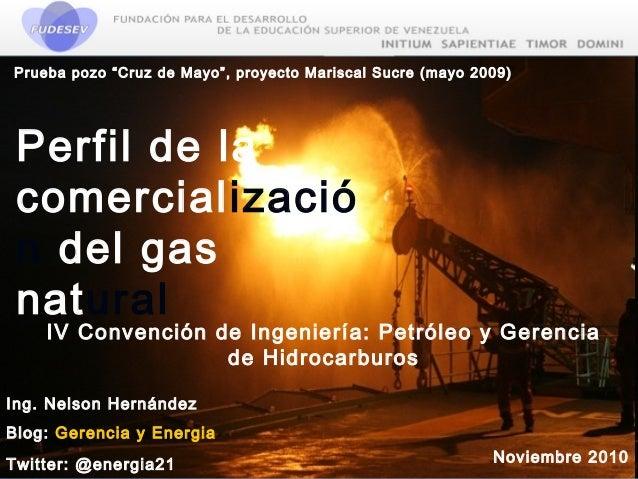 Perfil de la comercializacion del gas natural
