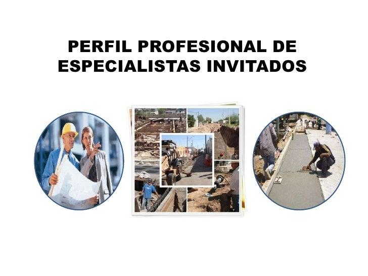 PERFIL PROFESIONAL DE ESPECIALISTAS INVITADOS<br />