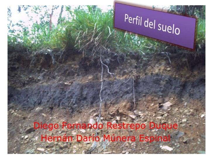 Perfil del suelo<br />Diego Fernando Restrepo Duque<br />Hernán Darío Múnera Espinal<br />