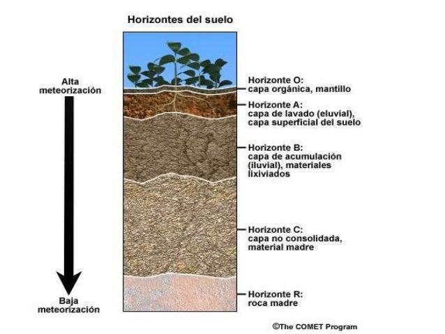 Perfil del suelo 2014 for Formacion de los suelos