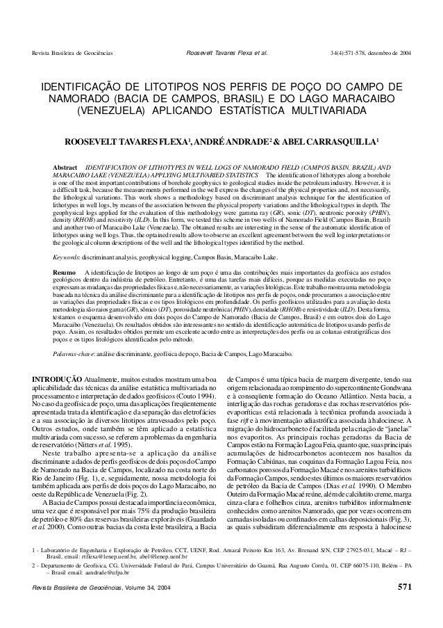 Revista Brasileira de Geociências 34(4):571-578, dezembro de 2004  IDENTIFICAÇÃO DE LITOTIPOS NOS PERFIS DE POÇO DO CAMPO ...