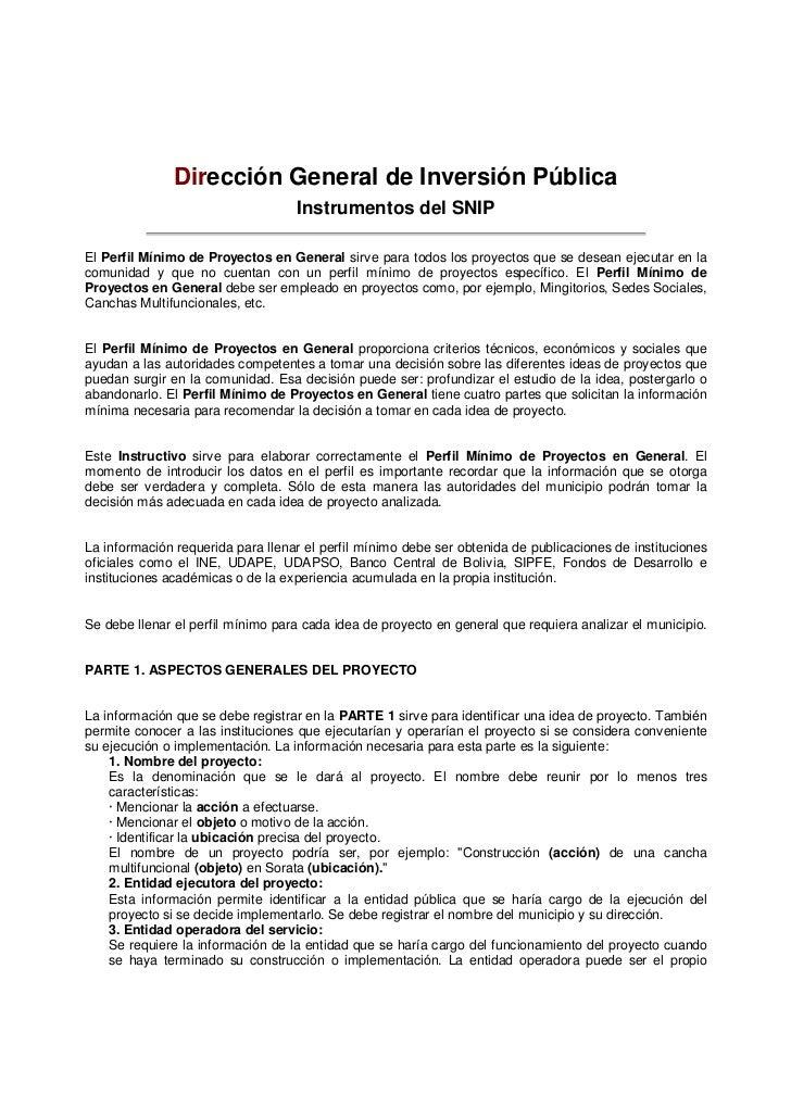 Dirección General de Inversión Pública                                   Instrumentos del SNIPPERFIL MÍNIMO DE PROYECTOS E...