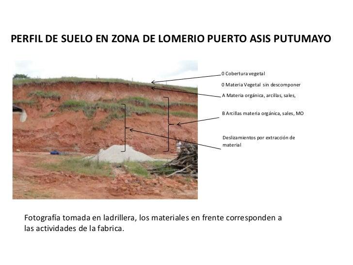 Perfil suelo puerto asis perspectivas del uso del suelo for Perfil del suelo wikipedia
