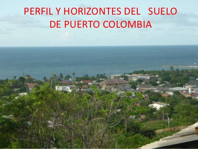 Perfil y horizontes del suelo de puerto colombia for Perfil del suelo wikipedia
