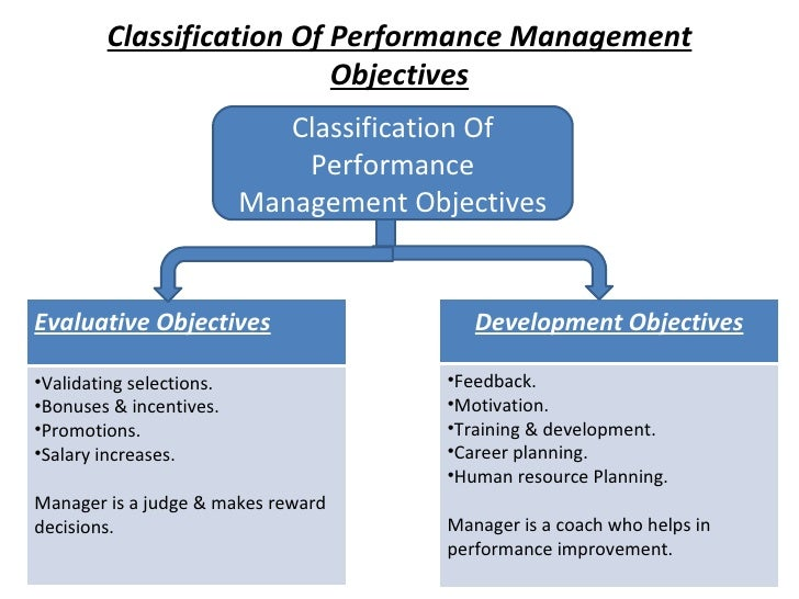 Classification Of Performance Management Objectives Classification Of Performance Management Objectives Evaluative Objecti...