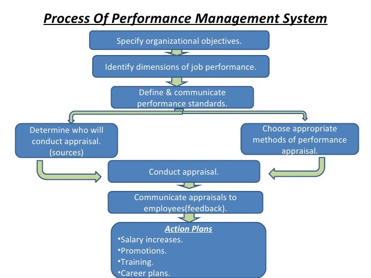 Process Of Performance Management System Specify organizational objectives. Identify dimensions of job performance. Define...
