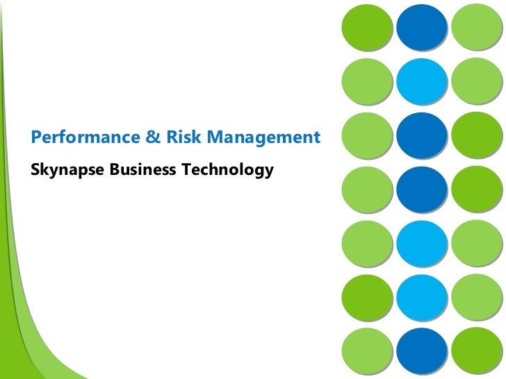 Skynapse Business Technology Performance & Risk Management
