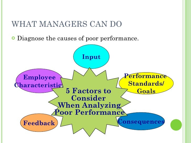 WHAT MANAGERS CAN DO <ul><li>Diagnose the causes of poor performance. </li></ul>Employee Characteristics Performance  Stan...