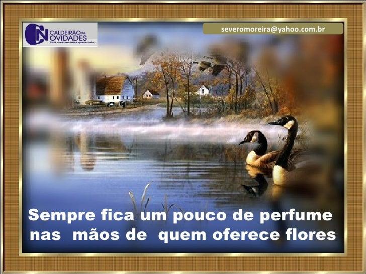 severomoreira@yahoo.com.br     Sempre fica um pouco de perfume nas mãos de quem oferece flores                    Seqüênci...