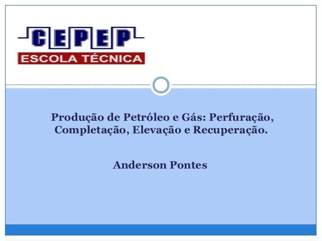 Produção de Petróleo e Gás: Perfuração, Completação, Elevação e Recuperação. Anderson Pontes