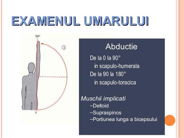 EXAMENUL UMARULUI Abductie De la 0 la 90° in scapulo-humerala De la 90 la 180° in scapulo-toracica Muschii implicati –Delt...