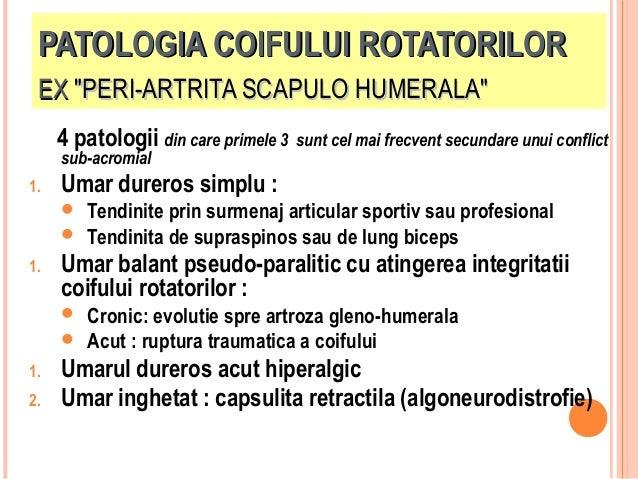 """PATOLOGIA COIFULUI ROTATORILOR EX """"PERI-ARTRITA SCAPULO HUMERALA"""" 4 patologii din care primele 3 sub-acromial  1.  Umar du..."""