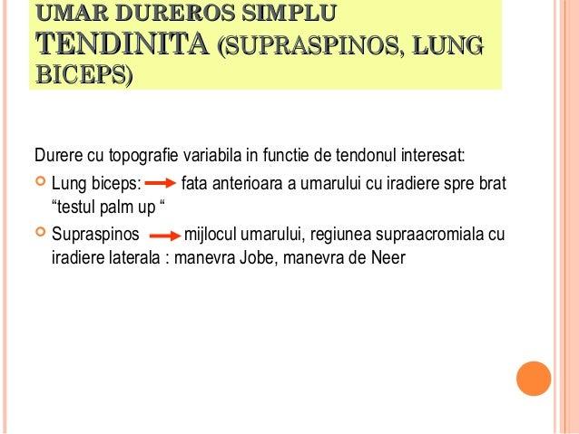 UMAR DUREROS SIMPLU  TENDINITA (SUPRASPINOS, LUNG BICEPS)  Durere cu topografie variabila in functie de tendonul interesat...