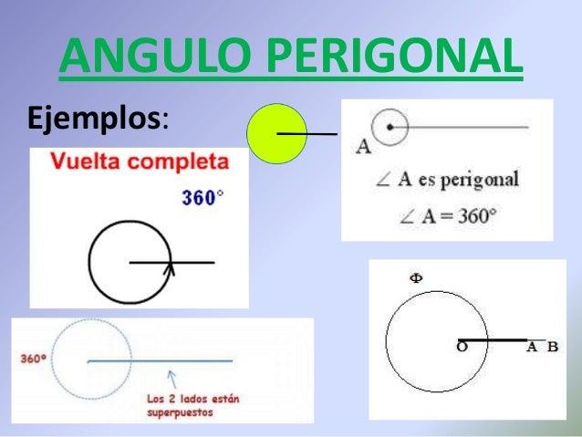 f5efc40e81 Perigonal