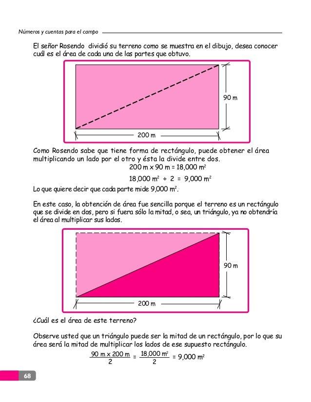 Perimetro Area Y Volumenes