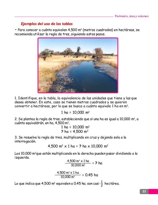 Perimetro area y volumenes - Pasar de metros a metros cuadrados ...