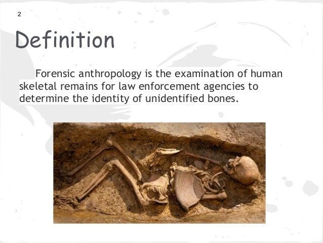 Skeletal remains definition
