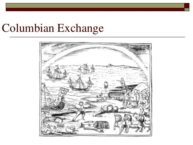 flora and fauna of the columbian exchange Flora and fauna of the columbian exchange 1307 words | 6 pages flora and fauna in the columbian exchange the voyage undertaken by christopher columbus to attempt to find a more direct route to india would fail in it 's goal.