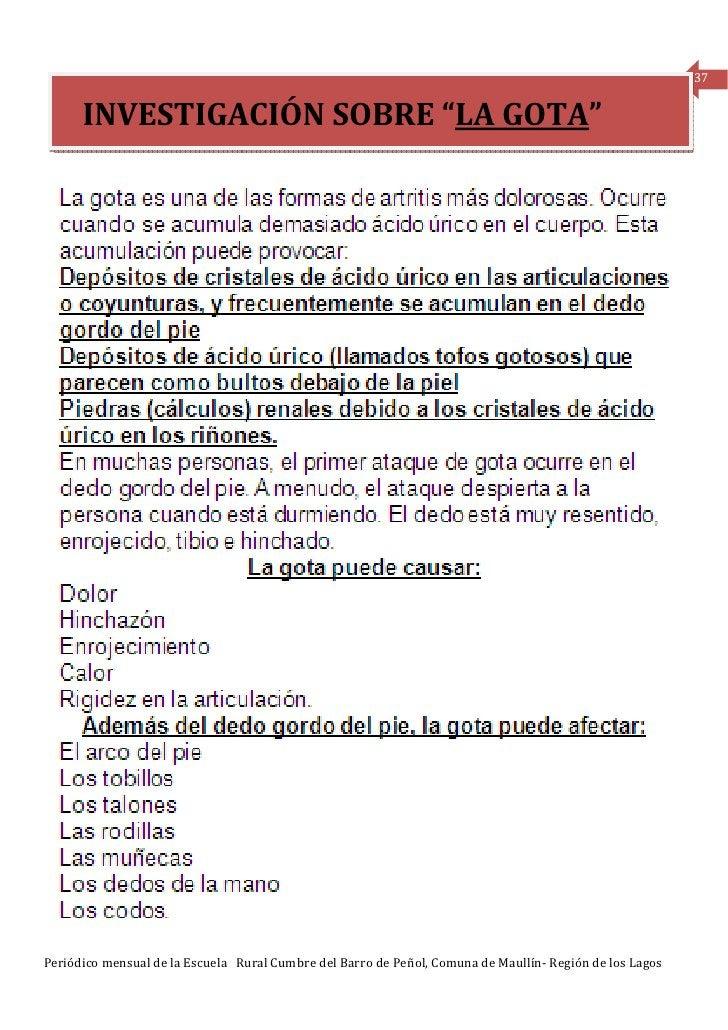"""37      INVESTIGACIÓN SOBRE """"LA GOTA""""Periódico mensual de la Escuela Rural Cumbre del Barro de Peñol, Comuna de Maullín- R..."""