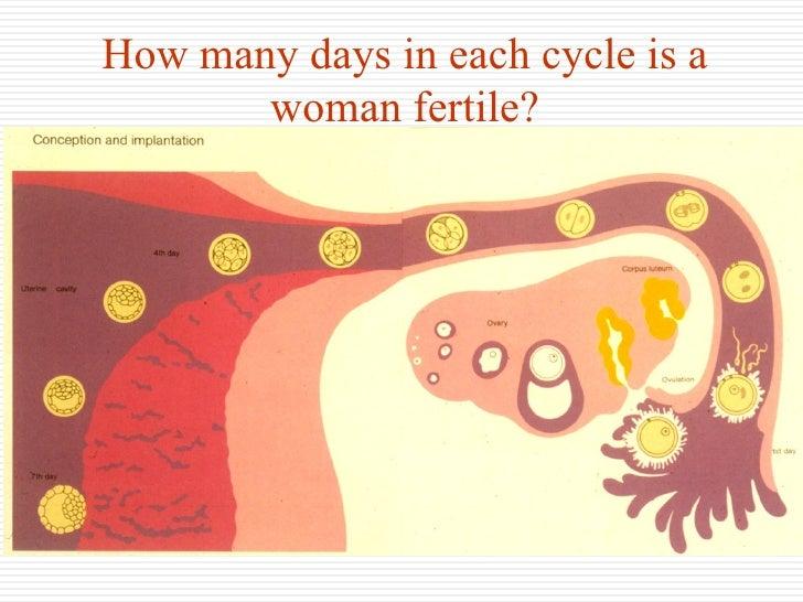 sex on fertile days show