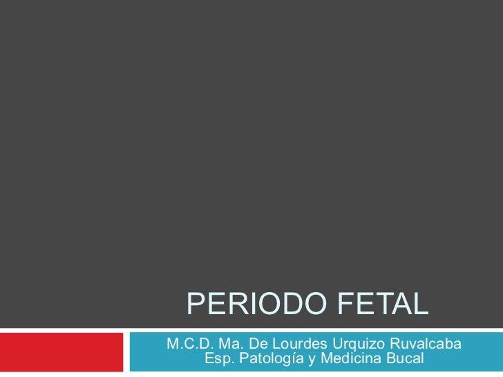PERIODO FETALM.C.D. Ma. De Lourdes Urquizo Ruvalcaba    Esp. Patología y Medicina Bucal