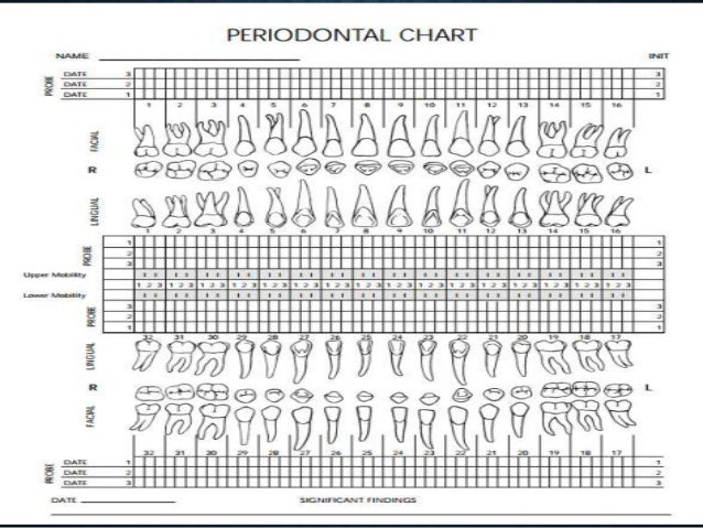 Periodontal chart form template fantastic periodontal for Periodontal chart template