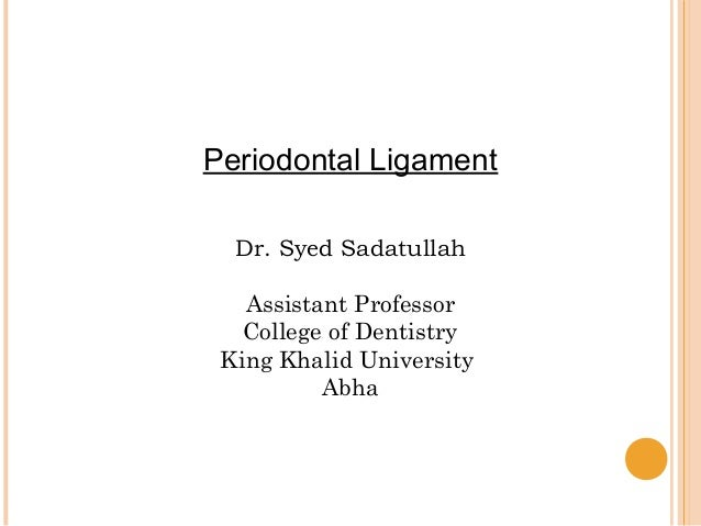 Periodontal Ligament Dr. Syed Sadatullah Assistant Professor College of Dentistry King Khalid University Abha