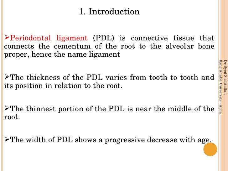 Periodontal ligament Slide 3