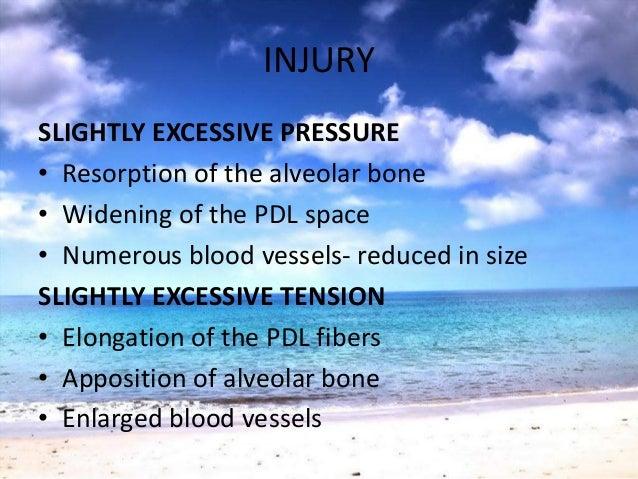 INJURYInjury to Periodontium: Temporary depression• Mitotic activity• Proliferation & Differentiation of Fibroblasts• Coll...