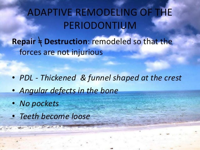 REVERSIBILITY OF TRAUMATIC LESIONS• Conditions not permitting adaptation toocclusal forces- damage worsens/persists• Plaqu...