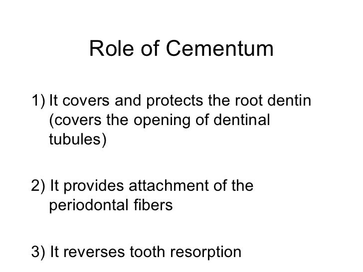 Role of Cementum <ul><li>It covers and protects the root dentin (covers the opening of dentinal tubules) </li></ul><ul><li...