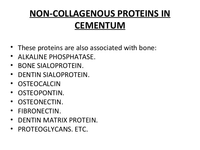 NON-COLLAGENOUS PROTEINS IN CEMENTUM • These proteins are also associated with bone: • ALKALINE PHOSPHATASE. • BONE SIALOP...