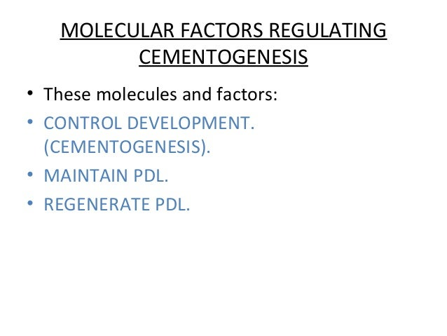 MOLECULAR FACTORS REGULATING CEMENTOGENESIS • These molecules and factors: • CONTROL DEVELOPMENT. (CEMENTOGENESIS). • MAIN...