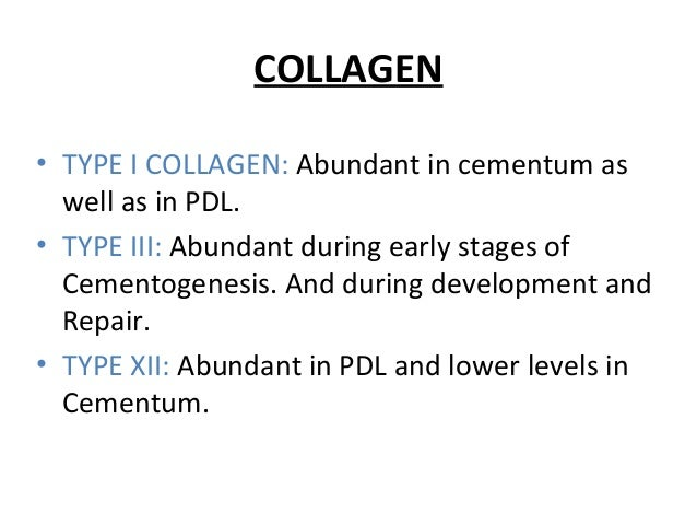 COLLAGEN • TYPE I COLLAGEN: Abundant in cementum as well as in PDL. • TYPE III: Abundant during early stages of Cementogen...