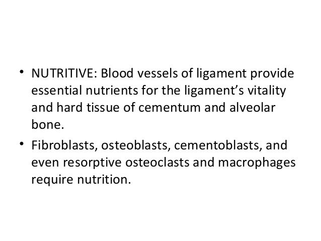 • NUTRITIVE: Blood vessels of ligament provide essential nutrients for the ligament's vitality and hard tissue of cementum...