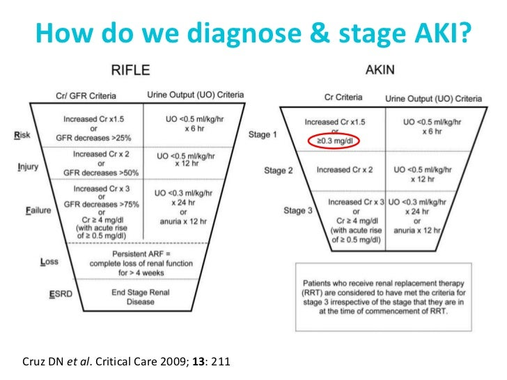 Perioperative acute kidney injury aki is avoidable in the elderly and should not occur 6 ccuart Choice Image
