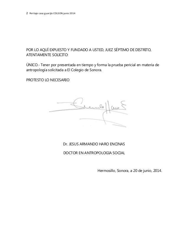 2 Peritaje caso guarijío COLSON junio 2014 POR LO AQUÍ EXPUESTO Y FUNDADO A USTED, JUEZ SÉPTIMO DE DISTRITO, ATENTAMENTE S...