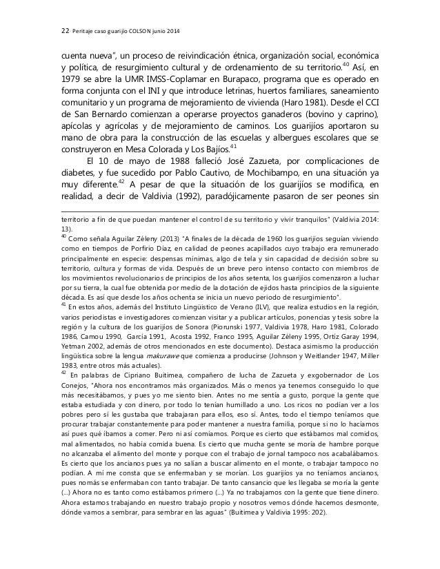 22 Peritaje caso guarijío COLSON junio 2014 cuenta nueva', un proceso de reivindicación étnica, organización social, econó...