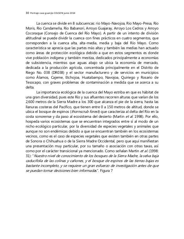 30 Peritaje caso guarijío COLSON junio 2014 La cuenca se divide en 8 subcuencas: rio Mayo-Navojoa, Rio Mayo-Presa, Rio Mor...