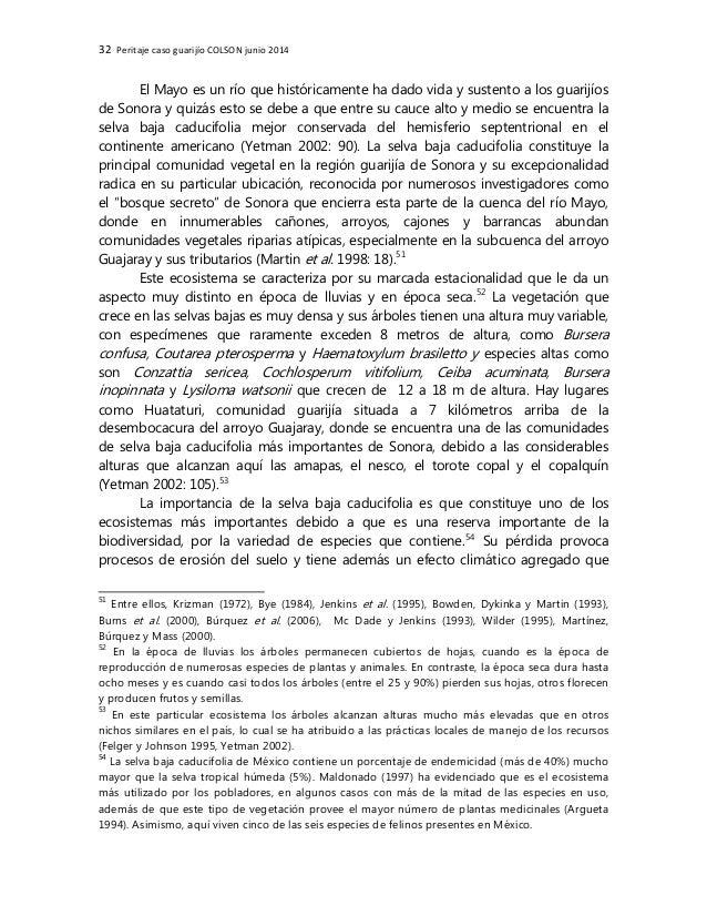 32 Peritaje caso guarijío COLSON junio 2014 El Mayo es un río que históricamente ha dado vida y sustento a los guarijíos d...