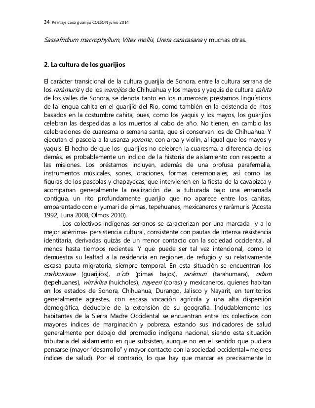 34 Peritaje caso guarijío COLSON junio 2014 Sassafridium macrophyllum, Vitex mollis, Urera caracasana y muchas otras. 2. L...