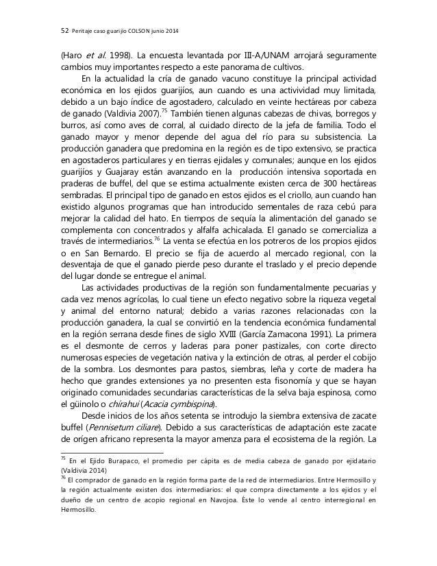 Peritaje antropológico del caso guarijio de Sonora y la presa Los PIlares/Bicentenario